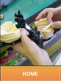 HOME ジルコニア 歯科技工 オールセラミック